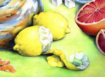 Citrus still-life. Royalty Free Stock Photo
