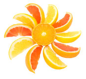 Citrus sun Stock Photography