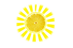 Citrus sun Stock Images