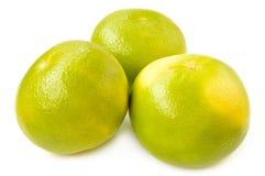 Citrus sveetie on a white background Royalty Free Stock Photo