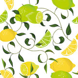 Citrus swirling seamless vector pattern Royalty Free Stock Image