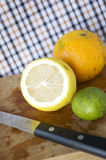 Citrus with textile background Royalty Free Stock Photo
