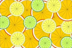 Citrus texture Royalty Free Stock Photos