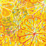 Citrus texture seamless pattern Stock Image