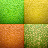 Citrus texture Royalty Free Stock Image