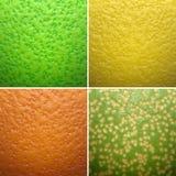 Citrus texture Royalty Free Stock Image