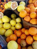 Citrus varitety in baskets at Market. Oranges and lemons in baskets at farmers market Royalty Free Stock Photography