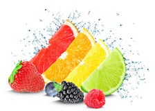 Citrus water splash and berries. On a white background Stock Image