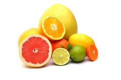 A Citrus on white background. The Citrus on white background Stock Photo