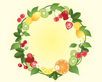 Citrus wreath Stock Images