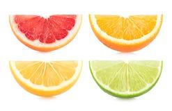 citrusa färgrika skivor Arkivbilder
