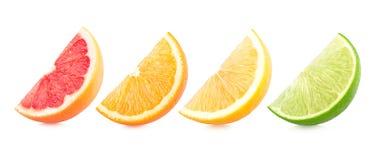 citrusa färgrika skivor Arkivfoton