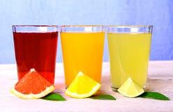 Citrusa fruktsafter i exponeringsglas från grapefrukten, apelsiner, limefrukt arkivfoto