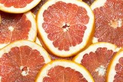 Citrusa mogna saftiga skivor för bakgrund av den orange citronen Royaltyfri Bild
