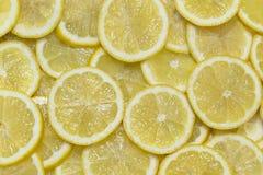 Citrusa mogna saftiga skivor för bakgrund av den orange citronen Royaltyfri Fotografi