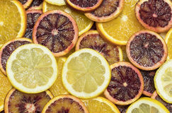 Citrusa mogna saftiga skivor för bakgrund av den orange citronen Arkivfoton