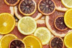 Citrusa mogna saftiga skivor för bakgrund av den orange citronen Royaltyfria Foton