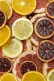 Citrusa mogna saftiga skivor för bakgrund av den orange citronen Arkivfoto