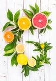 citrusa nya frukter Royaltyfria Foton