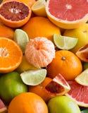 citrusa nya frukter Arkivbilder