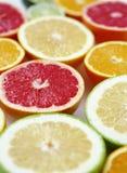 citrusa nya frukthälfter Royaltyfria Foton
