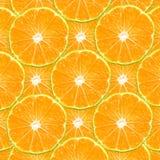citrusa skivor Royaltyfri Foto