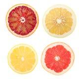 citrusa skivor Arkivfoton