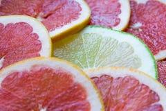 Citrusa skivor Royaltyfria Bilder