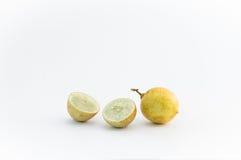 Citrusboomziekten, Citroen Royalty-vrije Stock Afbeelding