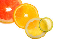 Citruses Royalty Free Stock Photography