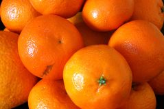 Citruses Stock Images