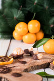 Citruses with chocolate Stock Photos