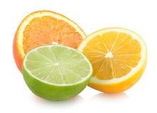 Citruses Stock Photos