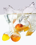 Citruses into water Stock Image