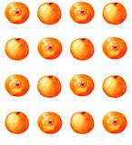 Citruses watercolor seamless pattern. With bright oranges Royalty Free Illustration