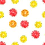 Citruses watercolor seamless pattern - oranges, lemons, grapefruits Royalty Free Stock Photography