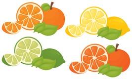 Citrusfärgstänk vektor illustrationer