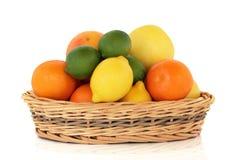 citrusfrukt Fotografering för Bildbyråer