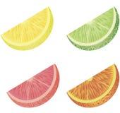 citrusfrukt Arkivfoton