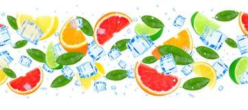 Citrusfrukt med is Arkivbild