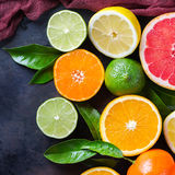 Citrusfruktbakgrund Apelsin grapefrukt, tangerin, limefrukt, citronvitamin arkivfoto