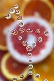 Citrusfruktblandning Arkivfoto