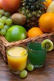 Citrusfrukter Arkivbild
