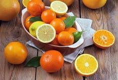Citrusfrukter - apelsin, citron, tangerin, grapefrukt Royaltyfri Fotografi