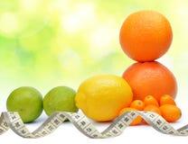 Citrusfrukter apelsin, grapefrukt, citron, limefrukt, Kumquat med att mäta bandet fotografering för bildbyråer