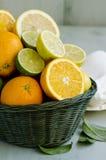 Citrusfrukter i en korg. Fotografering för Bildbyråer