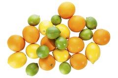 citrusfrukter (limefrukter, citroner, apelsiner) Arkivbild