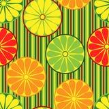 citrusfrukter mönsan seamless Royaltyfria Bilder