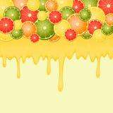 Citrusfrukter med en flödande flytande, en fruktsaft och en honung Vektor Illustrationer