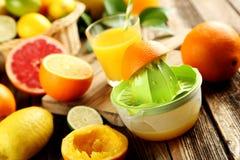 Citrusfrukter med juiceren Arkivbilder